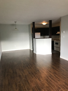 Spacious 2 bed/ Dog Friendly/ Avail. Now