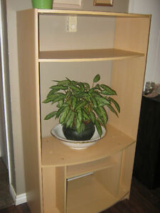 Entertainment unit/shelving unit - EUC - $5