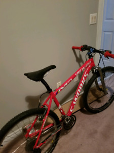 Specialized S-Works M5 mtn bike