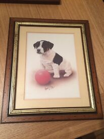 Puppy in picture frame print by Robert J May.