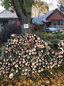 DUMP SITE WANTED - YORK REGION - FREE FIREWOOD AND BRANCHES