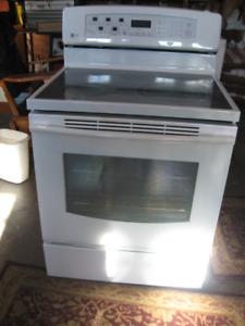 L.G. SELF CLEANING CONVECTION STOVE