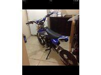 125cc big pitbike