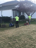 $100 Spring Clean Up Special!