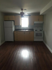 The Rest of December 2016 is Free - Two Bedroom Apt Mount Pearl