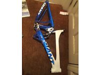 Giant glory dh frame