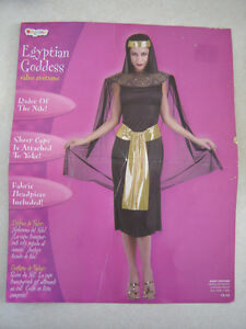 Egyptian Goddess Costume - size 12-14 (can easily fit smaller)