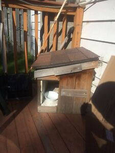 Small dog House