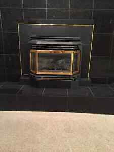 Regency gold plated gas fireplace