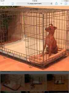 Puppy Apartment Cage Size Large