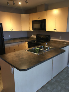 For Sale By Owner Stony Plain Condo