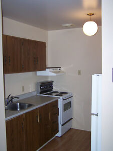 1 Bedroom fully furnished apartment available