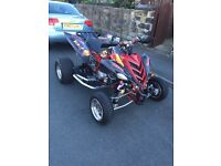 Yamaha raptor special (RED BULL EDITION 2009!!!