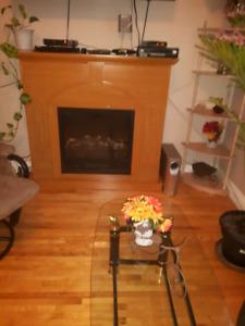 Foyer electrique