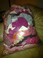 Size 2T Girls Clothes 103 items