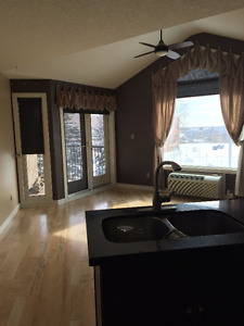 Upscale Downtown Condo with Stunning View