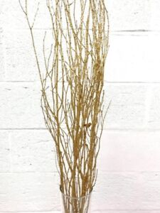 Manzanita branch / twig branches/ branch centerpiece / tall