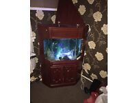 Corner fish tank unit