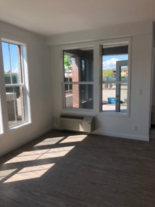 New large 2 bedroom 2 washroom condo in heart of Kelowna
