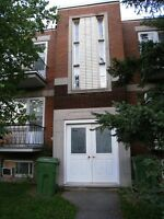 3_1/2 Apt in LaSalle, recently renovated