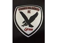 Horndean Hawks FC