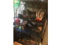 Large cage for rats, rabbits, chinchillas, etc