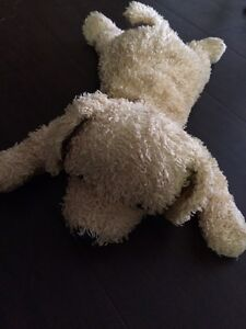 Various Stuffed Animals from 1-5 each