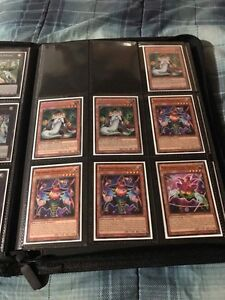 Shaddoll yugioh cards for sale.