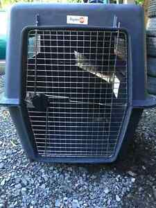 Grosse cage a chien!!!