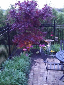 Metal Wrought Iron Fencing