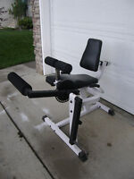 Seated leg curl and extension bench with weights
