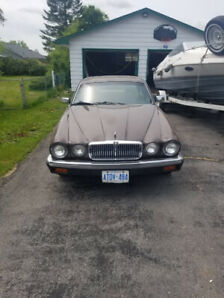 1986 Jaguar XJ6 brown