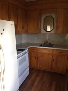 Avail Immediately 2 BR Apt - Sydney / Heat Included