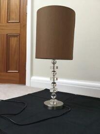 Light and Lamp Shade