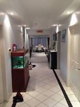 Spacious Room in Marsfield Marsfield Ryde Area Preview