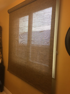 Hunter Douglas Solar  Screen Roller Blind