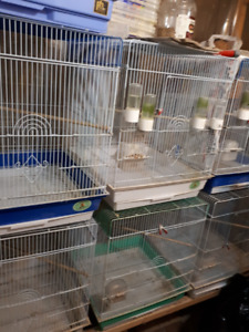 ***boxes  finches  cages****