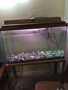 28 Gallon perfecto fish tank for sale