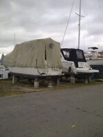 32' Carver Cover for Sale