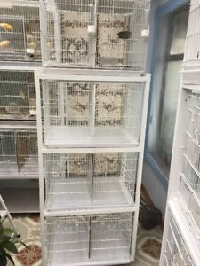 Set of 4 Canary breeding cages
