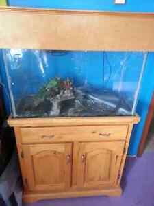 29 Gallon Fish Tank with Wooden Stand/Cabinet