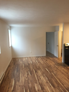 QUEEN'S STUDENTS: Renovated 4 Bedroom House 2 Minutes to Campus!