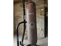 Everlast Freestanding Punch bag and stand