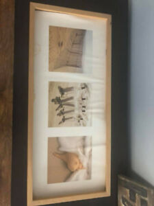 misc pictures and frames