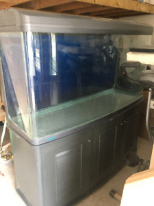 90% NEW Fish Tank with FREE purification system sale for $900