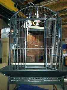 Large dome top wrought iron bird cage.