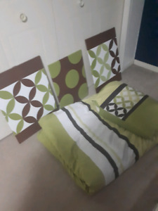 Twin duvet cover and 3 matching pictures