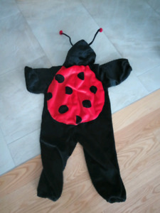 Lady bug Halloween costume for 2 to 3 years old
