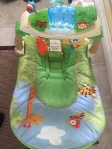 Baby rocker Kawartha Lakes Peterborough Area image 3