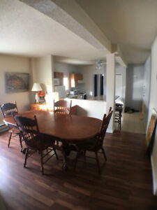 Room to rent in a spacious 5 room apt